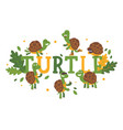 turtle cartoon character on typography background vector image