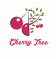 cherry tree with cherry fruit vector image vector image