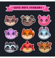 Cute animal faces set vector image