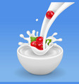 redcurrant in splashing milk falling into a bowl vector image