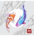Japanese watercolor carps koi swimming vector image