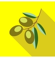 Branch with olives icon flat style vector image vector image