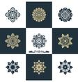 Design Luxury Template Set Swash Elements Art Vint vector image vector image