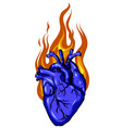 fire love logo designs concept heart fire logo vector image