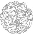 image various fruit and vegetables vector image