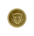 Wild Hog Head Angry Gold Coin Retro vector image vector image