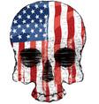 american flag skull vector image vector image