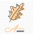 autumn season oak leave maple background im vector image vector image