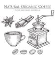 Coffee mill bean seed fruit cinnamon star vector image vector image