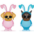 Easter dogs vector image