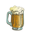 hand drawn mug color froth bubble light beer vector image