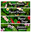 tropical plants and flowers banners cards vector image vector image