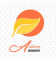 autumn season leave icon maple background i vector image