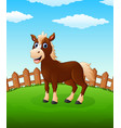 happy horse cartoon on the field vector image vector image