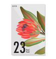 macro wild protea flower exotic tropical african vector image vector image