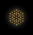 sacred geometry metatrons cube and flower ok life vector image vector image