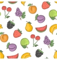 Fruit background vector image