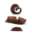 3d realistic brown chocolate shavings vector image vector image