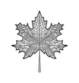 decorative maple leaf vector image vector image