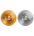golden and silver bitcoin coins vector image vector image
