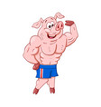 powerful male pig bodybuilder shows his vector image
