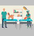 veterinary care flat veterinarian vector image