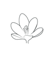 crocus beautiful flower simple black lined icon on vector image vector image