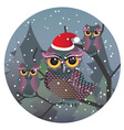 Cute Christmas Owl3 vector image vector image