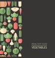 fresh organic vegetable fresh organic vegetable vector image