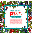 garden and forest berries sketch poster vector image vector image