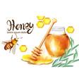 honeycomb banner watercolor vector image vector image