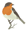 robin bird geometric isolated object vector image vector image