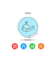 whale icon largest mammal animal sign vector image