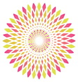 abstract circle flower vector image