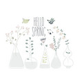 cartoon spring flowers in different bottles hello vector image
