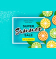 lemon lime orange citrus super summer sale vector image