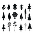 set tree icons black silhouet isolated vector image