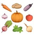 Colorful Vegetables Decorative Set vector image
