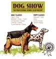 Dogs Show vector image vector image