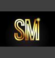gold alphabet letter sm s m logo combination icon vector image vector image