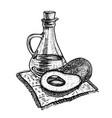 hand drawn sketch of avocado oil vector image