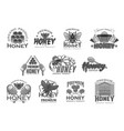honey beekeeping bee and honecomb icons vector image