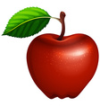 Red apple with leaf and stem vector image vector image