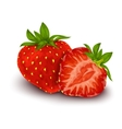 Strawberry isolated poster vector image vector image