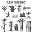 sugar cane icons vector image vector image
