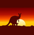at sunrise kangaroo scenery beauty landscape vector image vector image