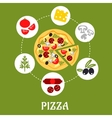 Flat pizza infographic with ingredients