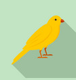 gold song bird icon flat style vector image