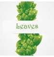 Green nature leaves background vector image