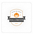 halloween celebration on textured background vector image
